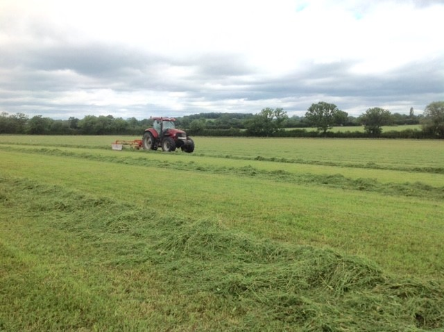 haylage being cut